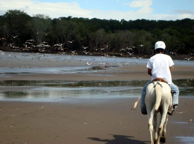 Horseback_Riding_3